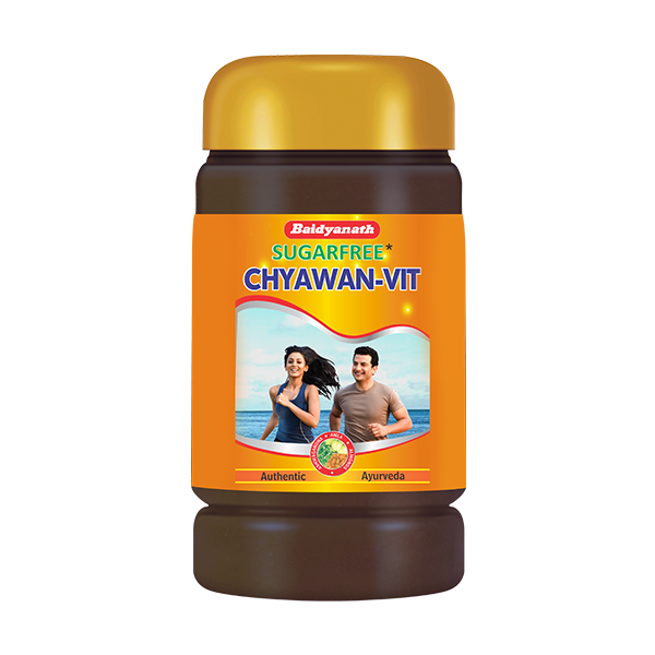 Chyawan-Vit Sugarfree (500g)